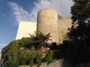 El lagarto de Jaén, ¿una muralla de leyenda? @ Plaza de Santa María (catedral)