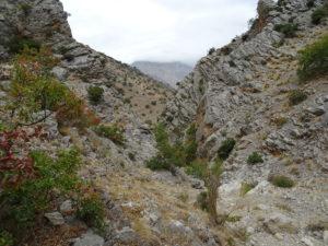 En La Puerta confluyen los barrancos de las Rastras y de las Calderas