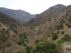 Cauce seco del río Albanchez