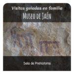 museo prehistoria 1